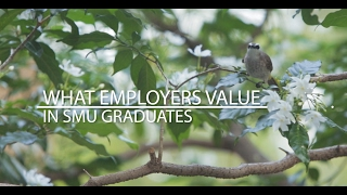 Download What Employers Value in SMU Graduates Video