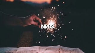 Download birds - thomas sanders ft doddleoddle (cover audio) Video