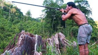 Download Borneo Death Blow - full documentary Video