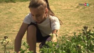 Download L'orto a scuola Video