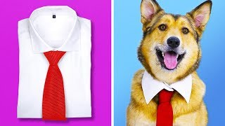 Download 14 COOLEST CRAFTS FOR PETS Video
