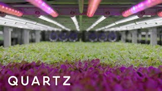Download Future of Food: Farming in the age of climate change Video