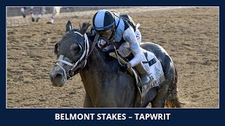 Download Tapwrit wins the 2017 Belmont Stakes Video
