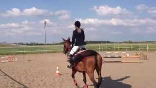 Download My 1st equestrian competition and 2nd place !!! Video