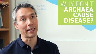 Download Why don't archaea cause disease? Video