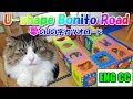Download ボス猫、夢のUの字カツオロードへ Boss Cat going into the U-shape Bonito Road of his dream【Eng CC】 Video