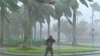 Download Powerful Hurricane Irma winds hitting Naples, Florida Video