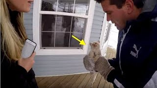 Download Man Finds A Kitten Frozen Solid In A Snowstorm And Attempts To Pull Off A Miracle Video