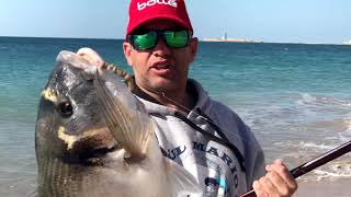 Download DORADA 7 KILOS RAUL MARIO SURFCASTING 2018 Video