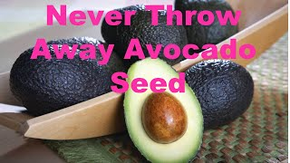 Download Never Throw Away Avocado Seed | Anti Aging Antioxidants Packed Video