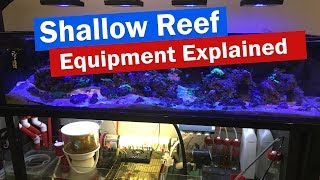 Download Shallow Reef Tank Sump and Equipment Explained - Echotech, Neptune, Jebao, DIY Reactor, Controllers Video