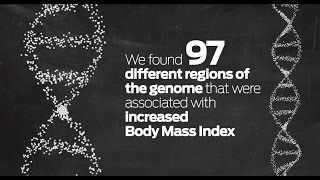 Download Is obesity in our genes? Study strengthens genetic link to body size Video