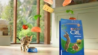 Download Purina CAT CHOW Defense Nature (2017) Video