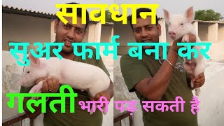 Download How to start pig farm in india 8130301238,9711197046 || सुअर पालन if u open pig farm watching video Video