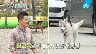 Download [예고] 뚜이, 문제견 되다?! 개통령 강형욱에게 호출당한 사연 Video