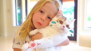 Download Stacy and the best cat stories for kids Video