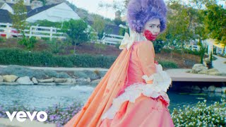 Download Grimes - Flesh without Blood/Life in the Vivid Dream Video
