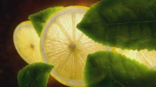 Download FuzeTea - Ice Tea Video