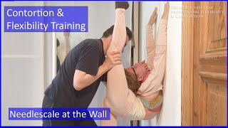 Download 55 Flexyart Contortion Training: Using the Wall - Also for Yoga, Pole, Ballet, Dance People Video