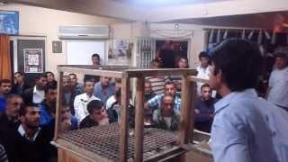 Download MERSİN GÜVERCİN SEVENLER DERNEĞİ Video