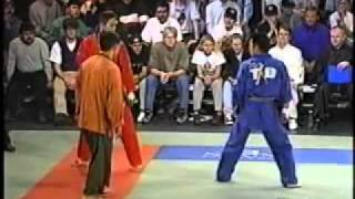 Download Taekwondo profesional fight Video