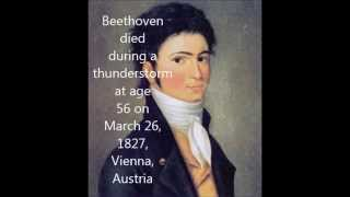 Download Interesting Facts About Beethoven Video