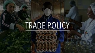 Download FAO Policy Series: Trade policy Video