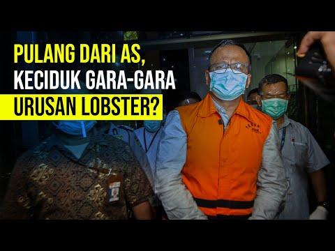 Profil Edhy Prabowo, Menteri KKP dan Orang Kepercayaan Prabowo Subianto yang Keciduk KPK