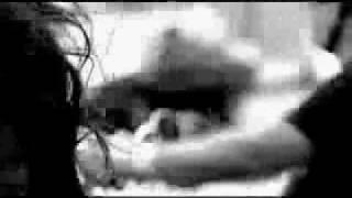 Download Harley-Davidson - Easy Rider - Music: Don Felder - Heavy Metal (Takin' A Ride) Video