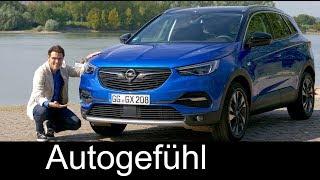 Download Opel Grandland X FULL REVIEW test driven 1.2 all-new Vauxhall SUV 2018 - Autogefühl Video
