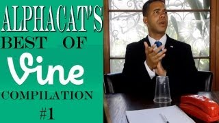 Download Alphacat's BEST OF VINE COMPILATION #1 Video