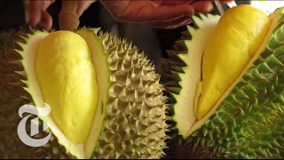 Download Durian - The World's Smelliest Fruit | The New York Times Video