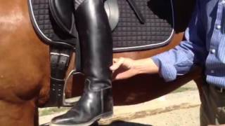 Download Correct leg aids to engage the horse's back Video