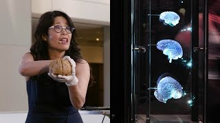 Download Exercise Your Brain - AMNH SciCafe Video