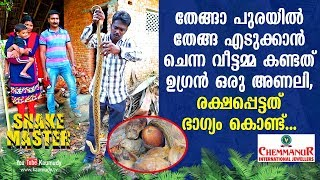 Download WOW! Housewife finds a dangerous viper in coconut shed. She just escaped | Snakemaster Video