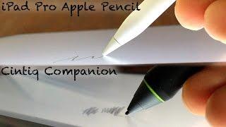 Download iPad Pro Pencil vs. Wacom Cintiq Companion Video