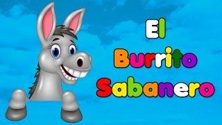 Download Mi burrito sabanero / El Burrito De Bélen/Villancicos Musica Navideña/Tuqui tuqui tuqui tuqui/feliz Video