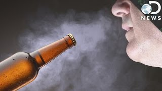 Download How Breathing Alcohol Gets You Drunk Video