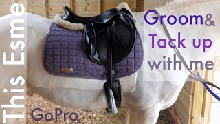 Download GoPro | Groom and Tack up with me | This Esme Video