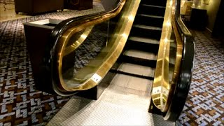 Download BEAUTIFUL OTIS ESCALATORS IN MONTREAL SHERATON HOTEL Video