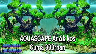 Download #47 Aquascape budget kos kosan Video