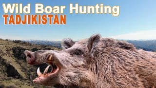 Download Wild Boar Hunting in Tadjikistan / 2019 Video