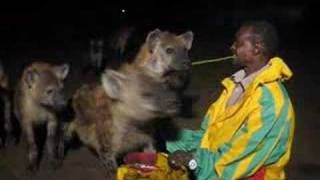 Download The Hyena Man Video