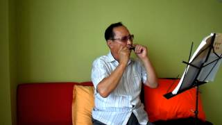 Download [찬송가]나같은죄인살리신 / 문광호 하모니카 연주(2013.7.23) Video