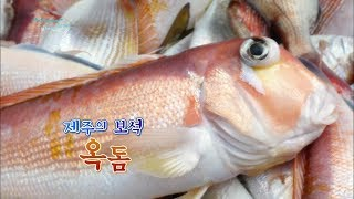 Download 제주에서만 맛볼 수 있는 별미, 옥돔 [어영차바다야] Video