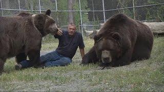 Download 誇張!紐約男子與1500磅棕熊勾肩搭背|美國人養熊當寵物|熊抱 Video