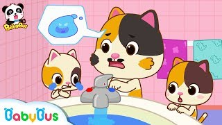 Download Baby Kitten Got Scalded | Baby Kitten's One Day at Home | Kids Safety Tips | Good Habits | BabyBus Video