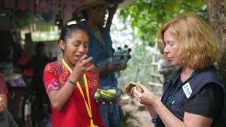 Download Plan-Reise nach Guatemala mit Marion Kracht (Kurzfassung) Video