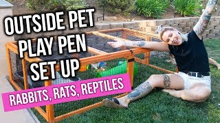 Download DIY OUTSIDE PET PLAY PEN for Rabbits, Rats & Reptiles | KristenLeannimal Video