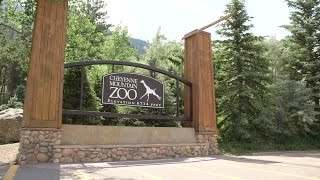 Download Discover Colorado - Cheyenne Mountain Zoo Video